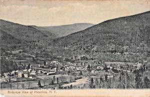 PHOENICIA NEW YORK  BIRDS-EYE VIEW-LOUIS KEEN CHICHESTER NY PUBL POSTCARD 1907