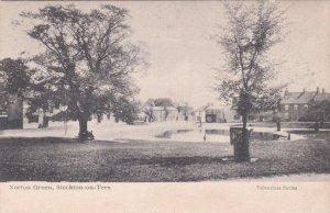 STOCKTON-ON-TEES, Durham, England, United Kingdom; Norton Green, 1900-10s