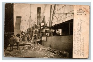 Vintage 1909 Photo Postcard Unloading Banana Boat Mobile Alabama