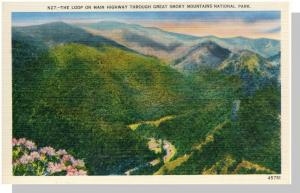 Smoky Mountains Nat'l Park,NC/TN Postcard,The Loop,Nr Mint!