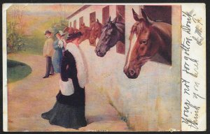 Fancy Dressed Ladies & Man Looking At Horses Used c1907