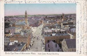 Massachusetts Worcester BIrds Eye View From State Mutual Building 1906