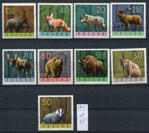266347 POLAND 1965 year stamps set ANIMALS Lynx BEAR Fox