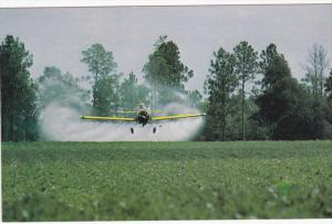 Coming in for a Close Dive, Crop Dusting, Peanut Crop, United States, 60´s