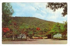 Entrance To Zoo, Hope Gardens, Kingston, Jamaica, W.I., PU-1967