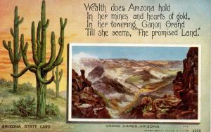 Arizona State Card - Cactus, Grand Canyon