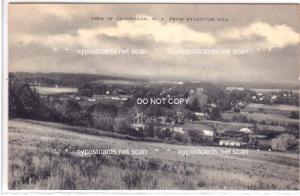 Aerial View, Cassadaga NY