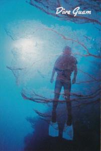 Guam Underwater Scene Fan Coral