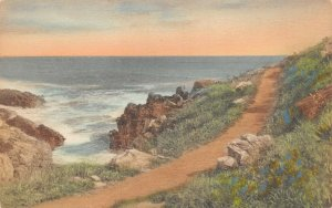 LPS10 Ogunquit Maine Marginal Way Path to the Sea Hand Colored Postcard