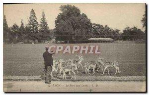 Old Postcard Lyon Deer Park