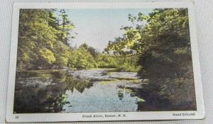 Vintage Postcard - 1920s Fresh River, Exeter, NH HAND COLORED GREAT COND..