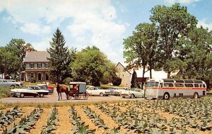 Amish Farm & House Lancaster, Pennsylvania, USA Bus Stations Unused