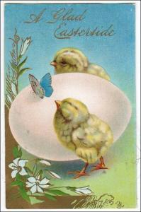 A Glad Eastertide - Baby Chicks & Egg