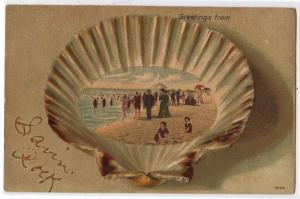 Sea Shell - Greetings from Savin Rock