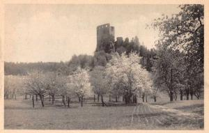 Czech Slovakia Valecova Castle Ruins Scenic View Antique Postcard J77516