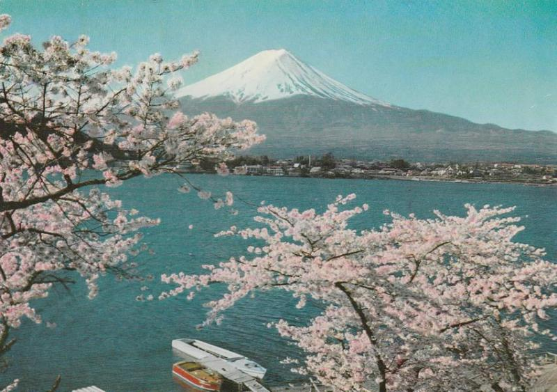 Mount Fuji, Japan - Cherry Blossoms and Kawaguchi Lake - pm 1984