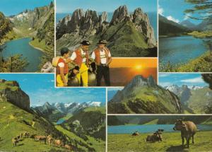 Switzerland, Suisse, ALPSTEIN, multi view, 1979 used Postcard