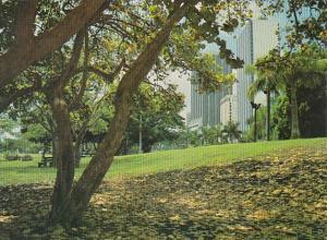 Florida Miami Bayfront Park On Biscayne Boulevard