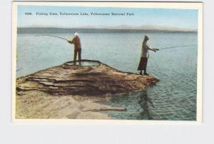 ANTIQUE POSTCARD NATIONAL STATE PARK YELLOWSTONE LAKE FISHING CONE