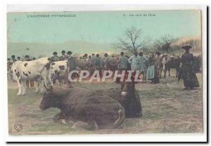 L & # 39Auvergne picturesque Old Postcard A Fair TOP corner (cow herds)