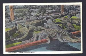 Reddingtons 'Gator' Farm St Augustine Florida unused c1910's