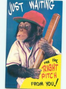 Pre-1980 MONKEY HOLDING BASEBALL BAT AC7082