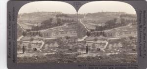 SV: 1910s ; Garden of Gethsemane , JERUSALEM , Palestine