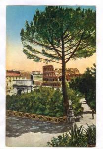 ROMA, Colosseo visto dal Palatino, Lazio, Italy, 00-10s