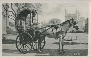 Northern India; View of Ekka (1 Horse Carriage) PPC, Unposted, c 1910's