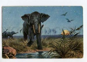 264603 ELEPHANT Night MOON by PERLBERG Vintage postcard