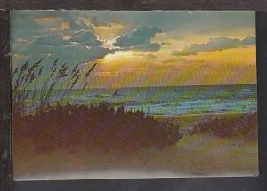 Sunrise at the Shore Postcard BIN