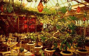 Florida Clearwater Kapok Tree Inn Patio Room