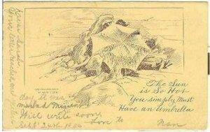 pc7884 postcard Los Angeles 1905 M. Rieder UDB Postally used.
