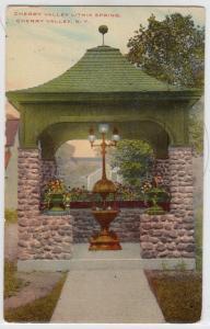 Lithia Springs, Cherry Valley NY