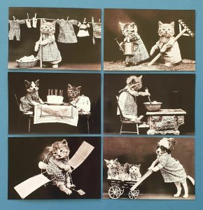 Set of 6 NEW Vintage Reproduction Cute Kitten Glossy Postcards 45i