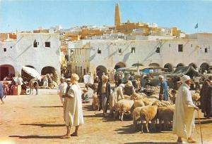 Algeria Ghardaia La Place du Marche, Market Place Sheeps Animals