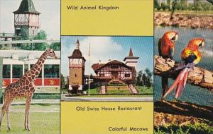 Florida Tampa Southern Home Of Anheuser Busch Wild Animal Kingdom Old Swiss H...
