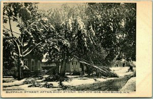 1906 HAMBURG New York Postcard BUFFALO STREET After Snow Storm Blizzard Unused