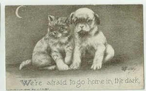 POSTCARD ~ Cat & Dog ~We're Afraid to Go in the Dark~ Crescent Moon ~ Colby  A/S