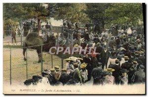 Old Postcard Zoo Marseille Jardin d & # 39acclimatation Camel