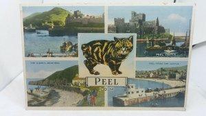Antique Postcard Multiview Peel IOM Manx Cat