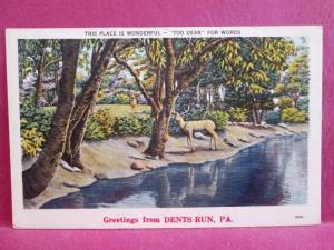Postcard PA Dent's Run Greetings from Dents Run