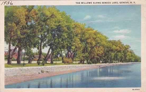 New York Geneva The Willows Along Seneca Lake Artvue 1936