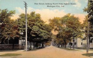 Michigan City Indiana~Pine Street Looking North From Eighth~Homes~1910 Postcard