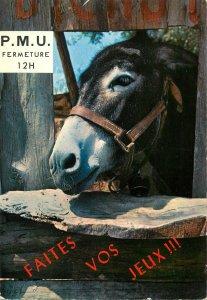 Postcard France donkey Tierce