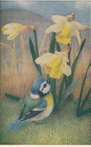 AS: Heda Armour , Bluelit & Daffodils , 1940-50s