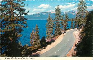 Lake Tahoe Sierra Nevada Mountains Snow roadside scene Postcard