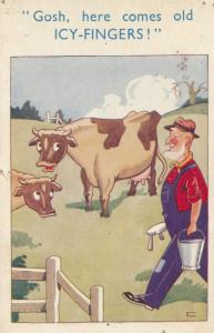 Farmer With Cow Icy Fingers Bucket Of Water Farming Comic Humour Postcard
