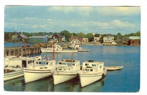 Fishing Boats in Harbour, St. Andrew's New Brunswick, Canada, PU-1954