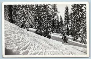 Postcard NV Ski Tracks Through the Snow in The Sierras Mountain RPPC P18